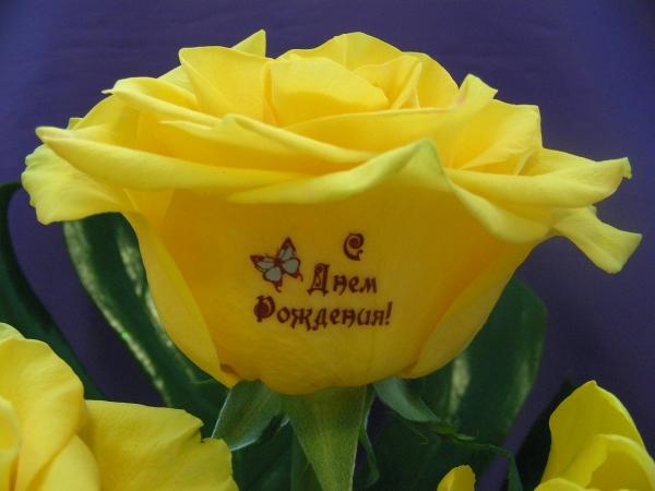 Очень, поздравительная открытка с днем рождения цветы желтые розы женщине